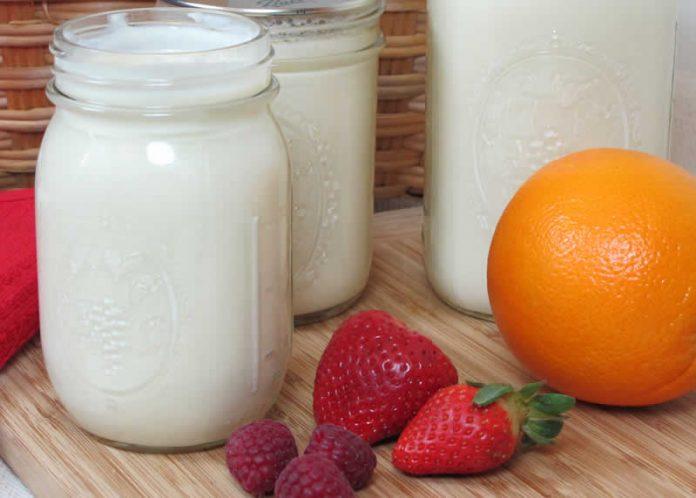 Yaourt au lait concentré avec thermomix