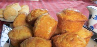 Muffins Nature Weight watchers